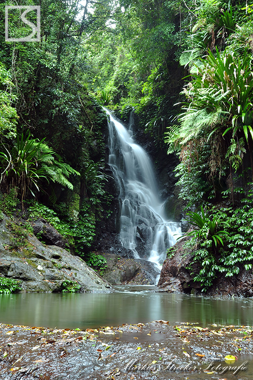 Elbana Falls Lamington National Park Queensland Australien