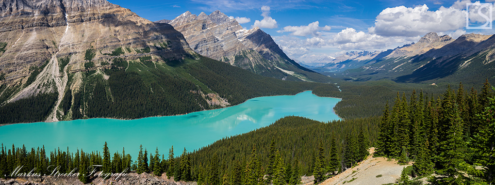 Peyto Lake Banff National Park Rocky Mountains Kanada